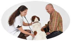 Heukels-Orthomanueel-dierenarts-7